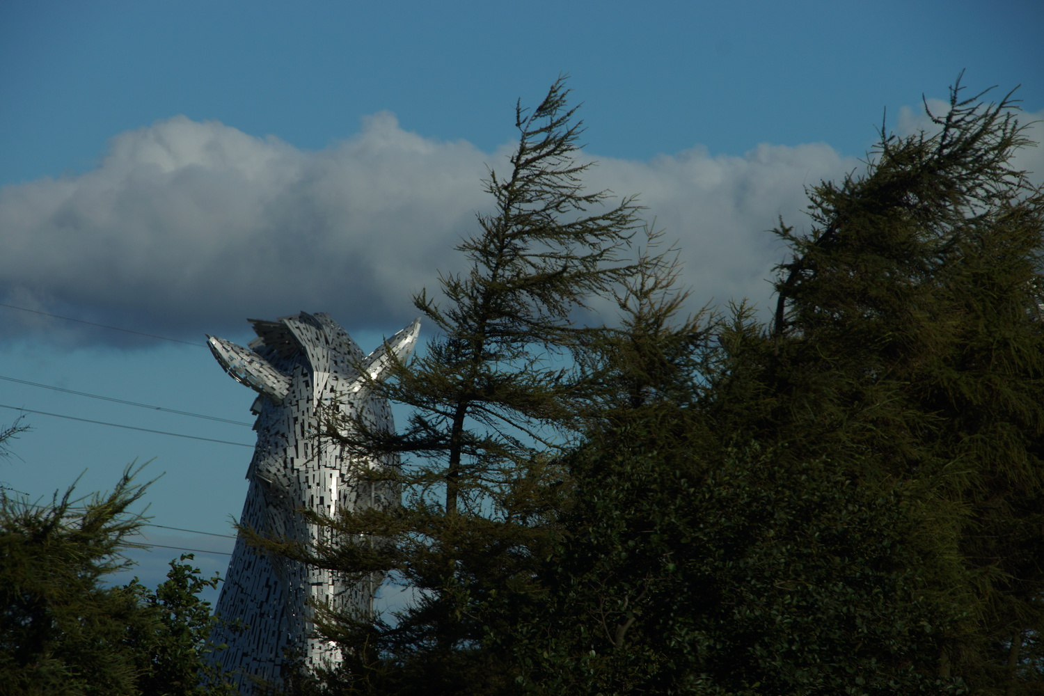 More Kelpies!
