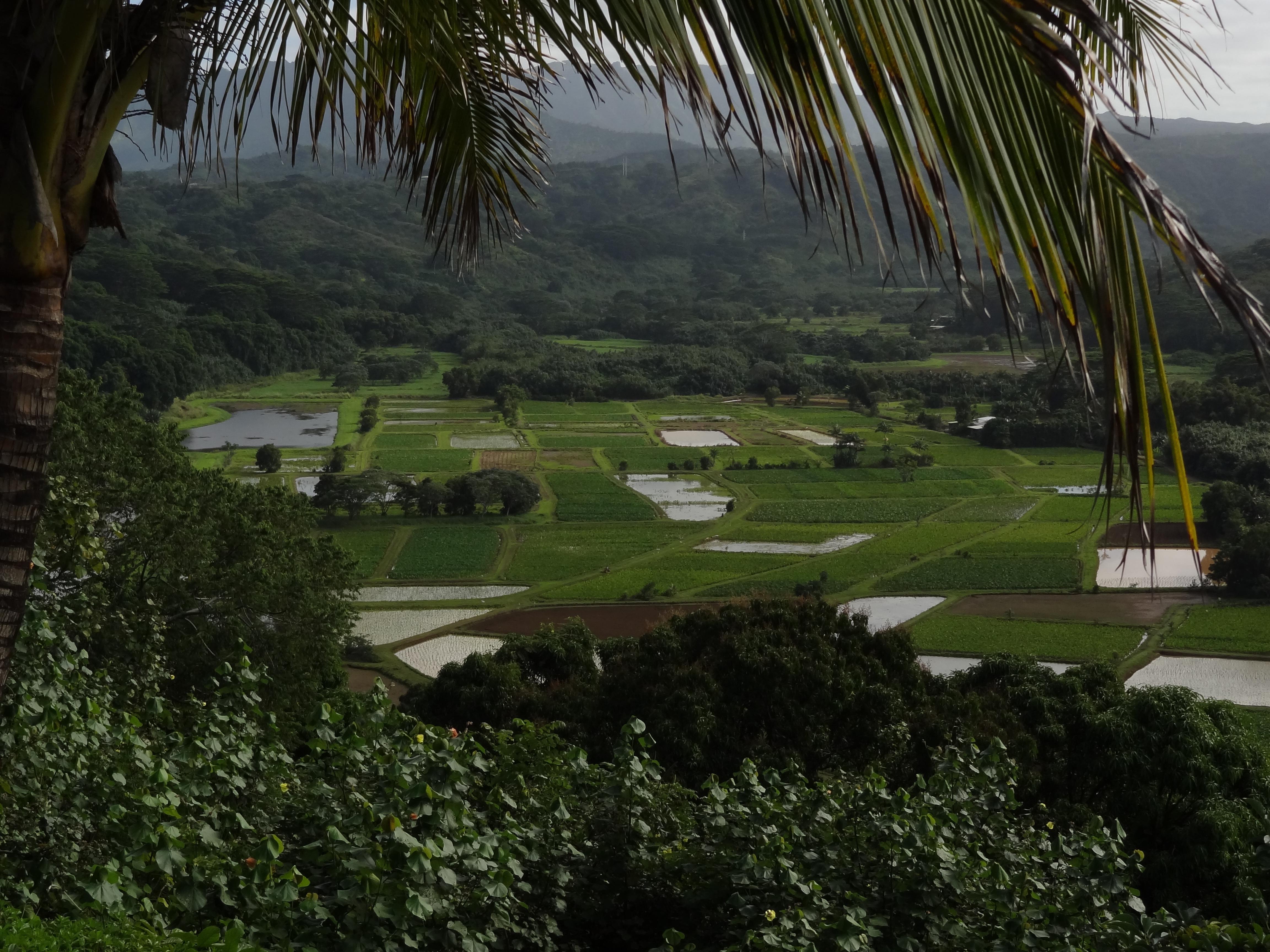 Hanalei, Kauaʻi